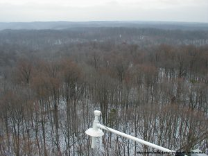 December 2002, Morgan Monroe State Forest