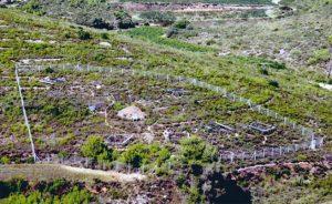 Climate manipulation experiments in the Mediterranean shrubland of Garraf Natural Park