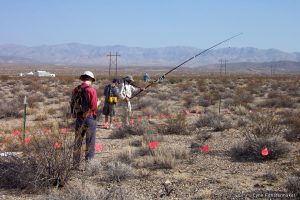 Mojave Global Change Facility optical sampling