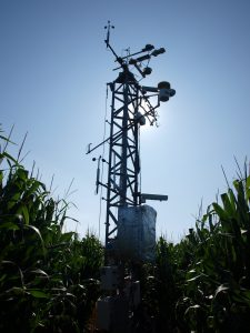 Mead irrigated maize soybean rotation tower