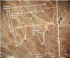 Nevada Desert FACE Facility